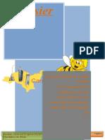 Dossier Ap1