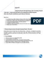 Plan Bee CED Assessment Report After Floods in Pakistan