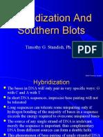 southern blotting 1