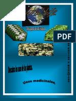 Tipos de plantasPDF libro