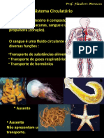 1.3 Fisiologia da Circulação