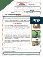 Actividad 4 DIA JUEVES COMUNICACION s11