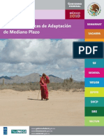 Marco de Políticas de Adaptación para México dic 2010