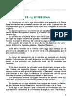 LibroSPIRULINA