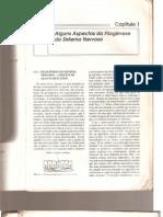 Ângelo Machado - Neuroanatomia - Alguns aspectos da filogênese do sistema nervoso