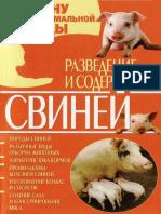 Разведение и содержание свиней