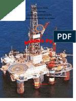 47933489-ANALISIS-PVT-NUEVO