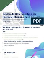 Aula 3 - Gestão de Desempenho e Potencial Humano