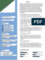 Curriculum Vitae Cadre Administratif 97 2003