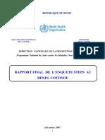 2007_STEPS_Report_Benin(1) - Copie