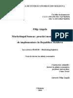angela_filip_thesis- licenta