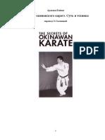arakaki_kiioshi_kiesi_sekrety_okinavskogo_karate_sut_i_tekhn