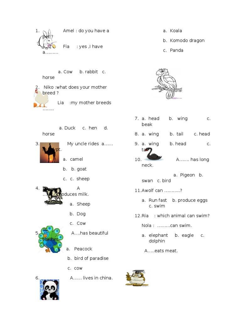 Soal Bahasa Inggris Animal Animals And Humans Nature