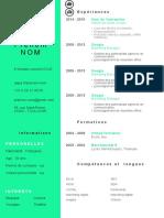 Exemple CV Moderne Vert Pastel