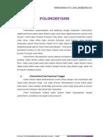 13. Polimorfisme