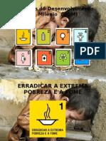 Objetivos do Desenvolvimento do  Milênio  (ODM)