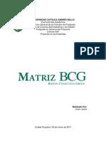 Matriz BCG-Javier Jaime