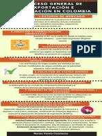 Evidencia 6 - Infografía (Importación y Exportación)