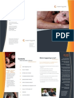 Domestic Violence Brochure