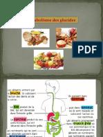 métabolisme-des-glucides-Dr.Khebbat-Zerargui-F.