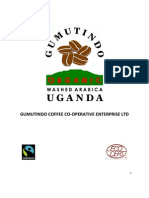 History of Gumutindo