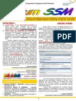 Newsletter Forum Ssm Nr. 3