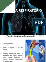 Sistema respiratório_2018.2
