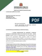 Peticao CIDH Desacato