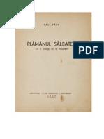 Paul Păun - Plămânul sălbatec (1939)