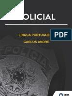 172840033017_PRF_PERIODO_SIMPLES_EXERCICIO