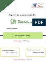 Rapport de stage -