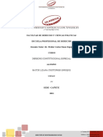 RSIV_DERECHO_CONSTITUCIONAL ESPECIAL