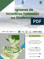 Programas de Incentivos Forestales en Guatemala PNUD