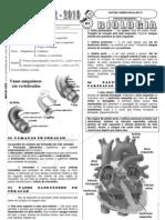 aula1-a_sistema_cardio-vascular_1
