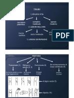 Paleopatologia Lezione 4 Traumatologia (1)