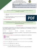 GUIA 3 CASOS DE FACTORIZACION 2P