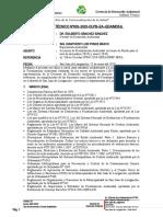 Informe Técnico N° 005 - 2020