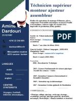 Cv Amine 2021 Francais