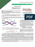 04 - Transcrição do DNA