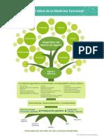 IFM+ +Functional+Medicine+Tree Spanish