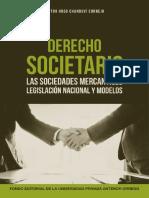Derecho Societario Virtual