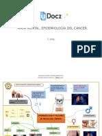 mapa-mental-epidemiologia-del-cancer