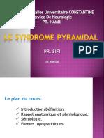 lesyndromepyramidal2013-140114142520-phpapp01