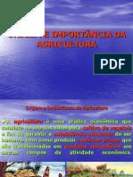 APRESENTAÇÃO 1.1 -  Origem e Importância da Agricultura - Copia