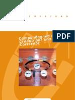 web-campo-magnetico-corriente