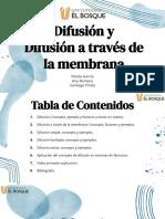 Grupo 10 - Tema Difusión y difusión a través de una membrana