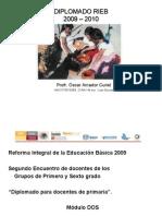 PRODUCTOS DEL DIPLOMADO RIEB 2009-2010