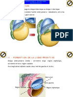 embryo-sem3-090304133401-phpapp02