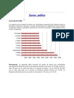 INDICADOR 20. Sector Publico