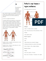 Posição anatômica-UNDB